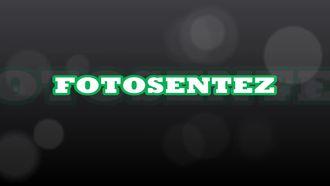 Fotosentez izle