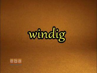 Windig izle