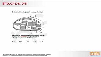 2011 LYS Biyoloji Fotosentez Tepkimeleri izle