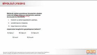 2012 LYS Biyoloji Palizat Parankiması izle