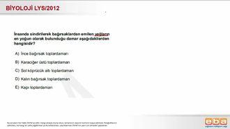 2012 LYS Biyoloji Sindirim Sistemi izle
