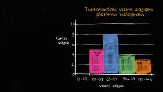 Grafikleri Yorumlamak izle