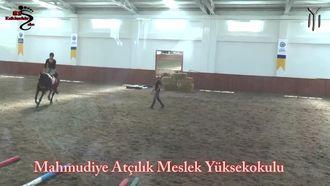 Eskişehir Mahmudiye Atçılık Meslek Yüksek Okulu izle