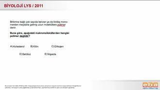 2011 LYS Biyoloji Organik Bileşikler izle