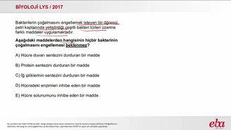 Bakteri (2017 LYS - BİYOLOJİ) izle