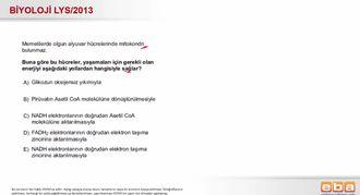 2013 LYS Biyoloji Hücresel Solunum izle