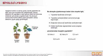 2013 LYS Biyoloji Bitkilerde Çiçeklenme izle