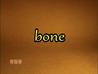 Bone izle
