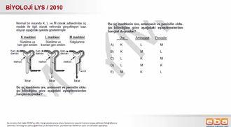 2010 LYS Biyoloji Boşaltım Sistemi izle