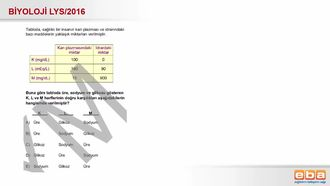 2016 LYS Biyoloji Boşaltım Sistemi izle
