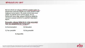 Mutualizm (2017 LYS - BİYOLOJİ) izle