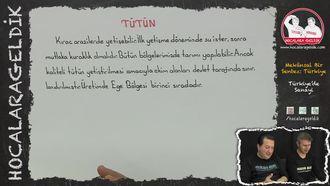 Türkiye'de Yerleştirilen Tarım Ürünleri (Sanayi Ürünleri) izle
