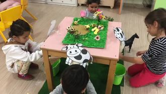 montessory and educatıon e twinning projesi süt sağma etkinliği izle