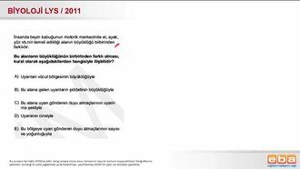 2011 LYS Biyoloji Sinir Sistemi izle