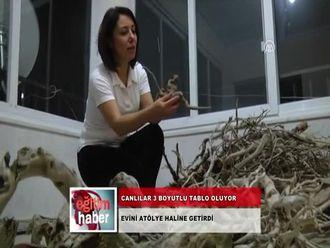 Canlılar 3 Boyutlu Tablo Oluyor (29.11.2012) izle
