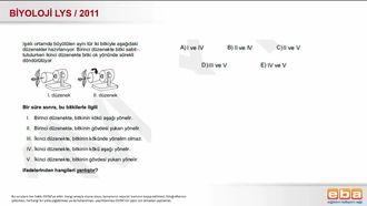2011 LYS Biyoloji Bitkilerde Hareket izle