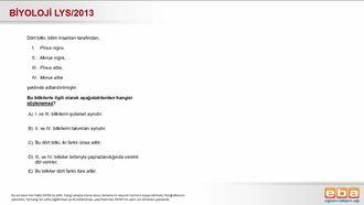 2013 LYS Biyoloji Sınıflandırma izle