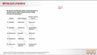2012 LYS Biyoloji Hücresel Solunum izle