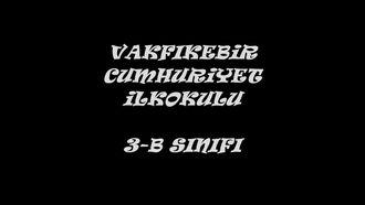 Annemize Türkü - İşaret Dili izle