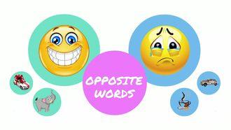Opposite Words izle