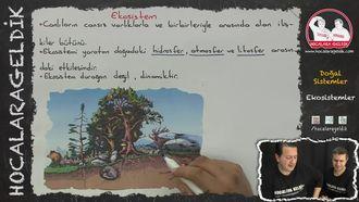 Ekosistemler izle