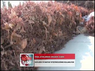 Yeşil Atıklardan Organik Gübre (19.10.2012) izle