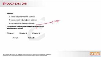 2011 LYS Biyoloji Endokrin Sistem izle