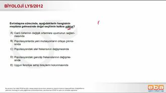 2012 LYS Biyoloji Doğal Seçilim izle