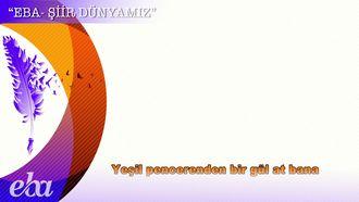 Serenad - Ahmet Muhip Dıranas izle