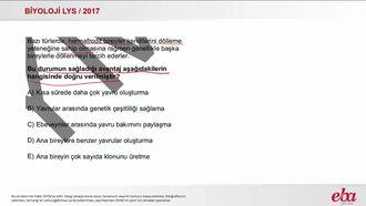 Hermafrodit (2017 LYS  - BİYOLOJİ) izle
