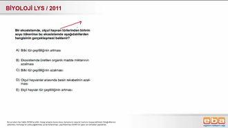 2011 LYS Biyoloji Ekoloji izle