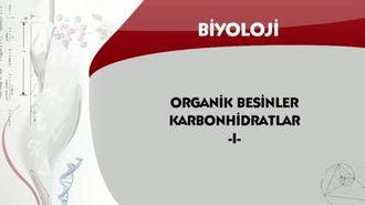 Organik Besinler Karbonhidratlar - 1 izle