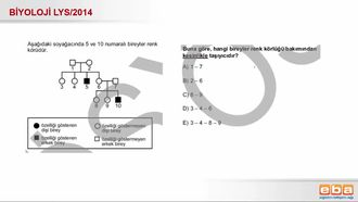 2014 LYS Biyoloji Eşeye Bağlı Kalıtım izle