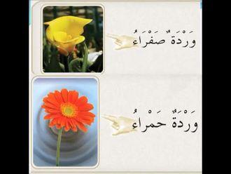 Arapça Sıfat Tamlaması izle