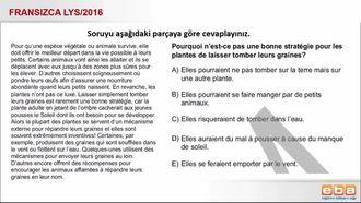 Fransızca, aşağıdaki parçaya göre cevaplama izle
