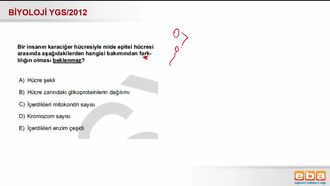 2012 YGS Biyoloji Hücre Çeşitlerinin Ortak Özellikleri izle