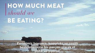 Vaclav Smil: Ne kadar et yemeliyiz izle