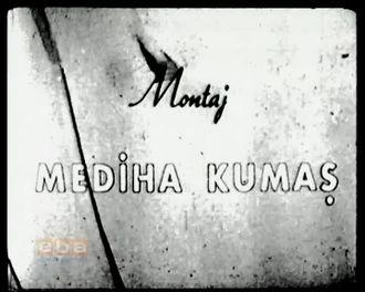 Bir Mektubun Hikayesi (1962) izle