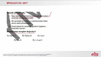 Genetik Şifre ve Protein Sentezi (2017 LYS - BİYOLOJİ) izle
