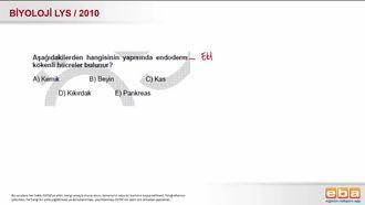 2010 LYS Biyoloji Embriyonik Dokular izle