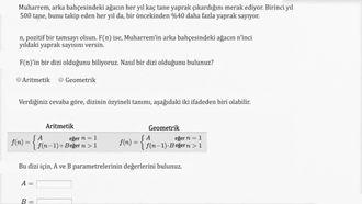 Aritmetik ve Geometrik Diziler ile Modelleme (Örnek) izle