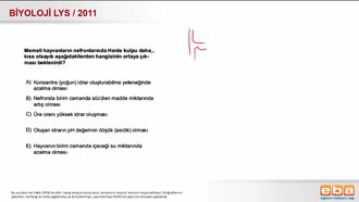2011 LYS Biyoloji Boşaltım Sistemi Henle Kulbu izle