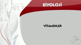 Vitaminler izle