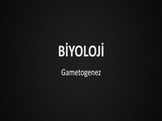 Gametogenez izle