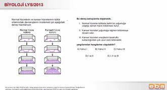 2013 LYS Biyoloji Hücre Bölünmeleri izle