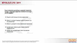 2011 LYS Biyoloji Sindirim Sistemi izle