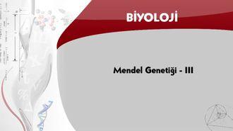 Mendel Genetiği - 3 izle