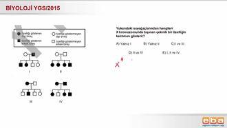 2015 YGS Biyoloji Eşeye Bağlı Kalıtım izle