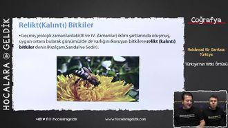 Türkiye'nin Bitki Örtüsü izle