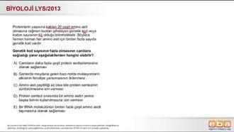 2013 LYS Biyoloji Protein Sentezi izle